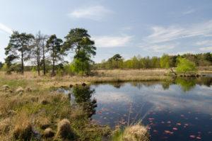 GPS-Abenteuer im Nationalpark DeMeinweg