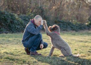 Schnauzentrip | Events für Menschen mit Hund