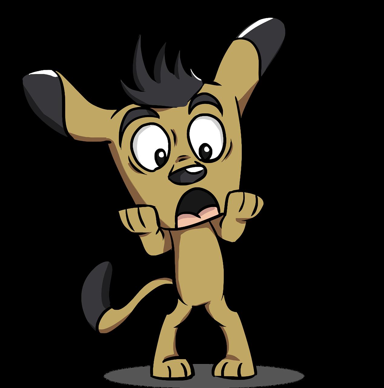Mein Hund hat Angst: Wie kann ich ihn unterstützen?