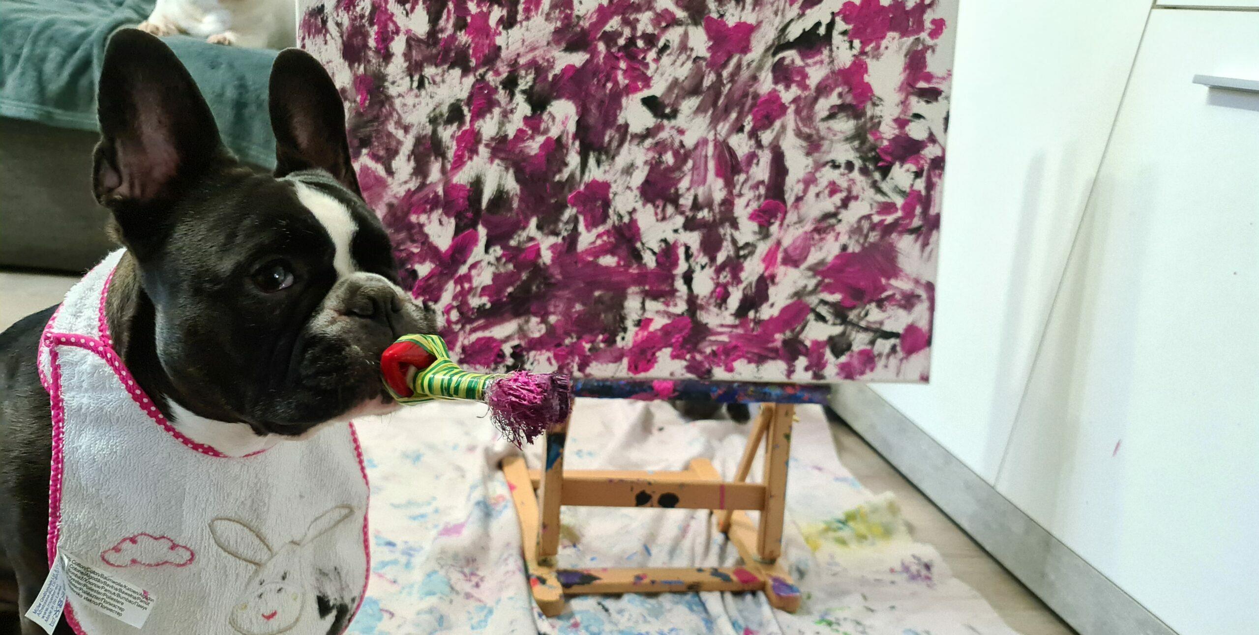 Cleo – ein ganz besonderer Therapiehund